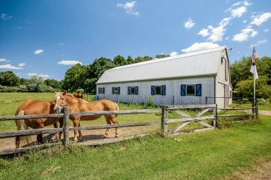 South Haven Horse Property for Sale